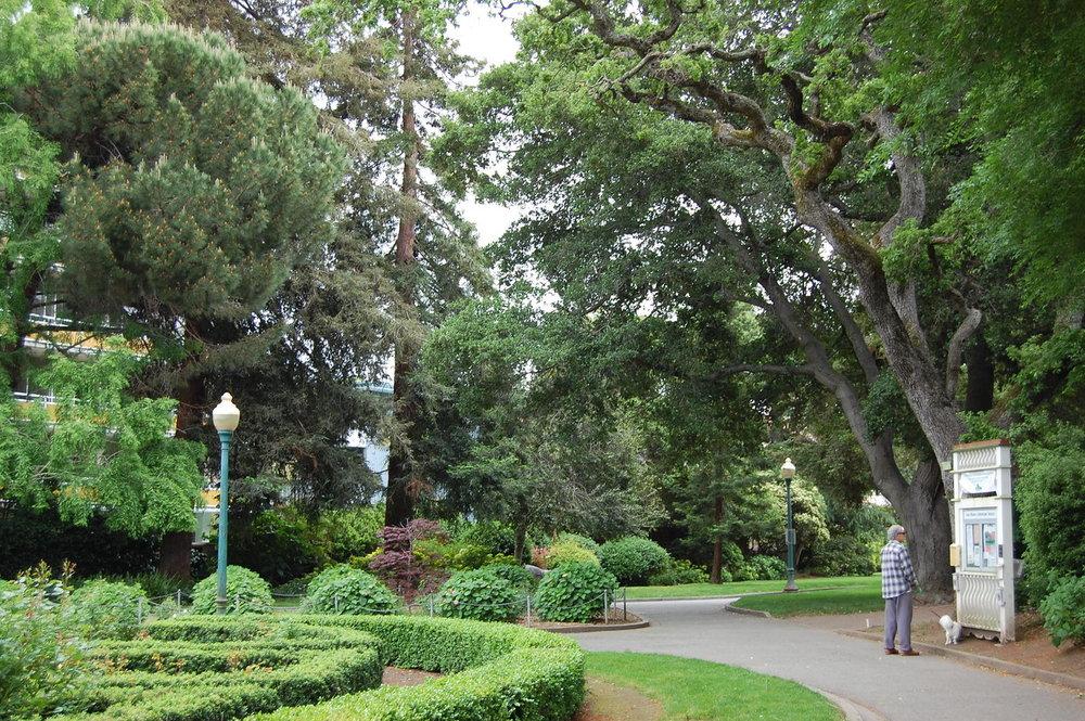 San Mateo Horticulture Society-X2.jpg