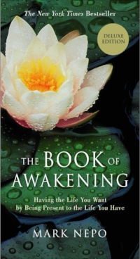 A collection of daily awakenings from an author who has deep and meaningful insight into everyday life.