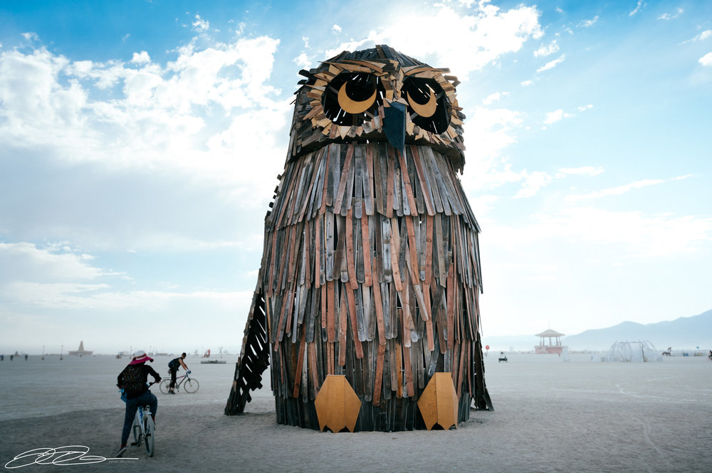 owl burning man