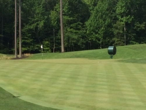 The ball was hit onto the green with a driver off the deck from 245 yards away.