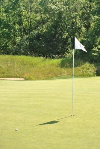 My approach shot on the first hole stopped 8 feet right of the pin.  I missed the birdie putt