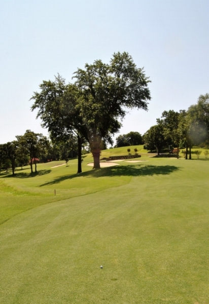 I needed to clear the tree and the bunkers to reach the green after my tee shot on the 10th hole.