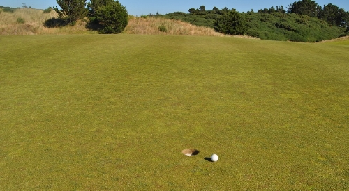 My putting cost me dearly on the back nine, inches short of a birdie on the 15th hole.