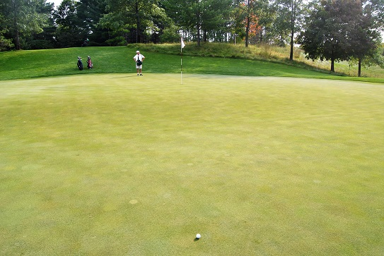 My approach landed much closer to the hole, but rolled down the slope away from the pin.
