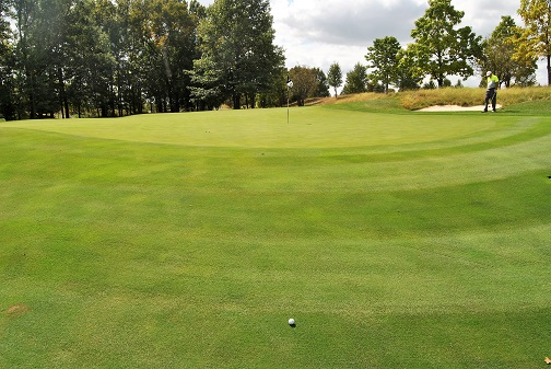 If you look closely you can see the pitch mark where my ball hit before rolling down the slope in front of the green.