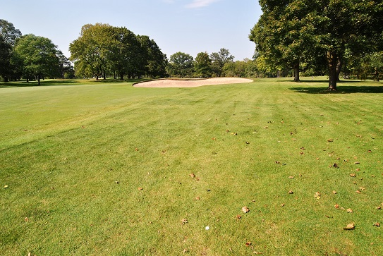 My drive on the 14th hole.