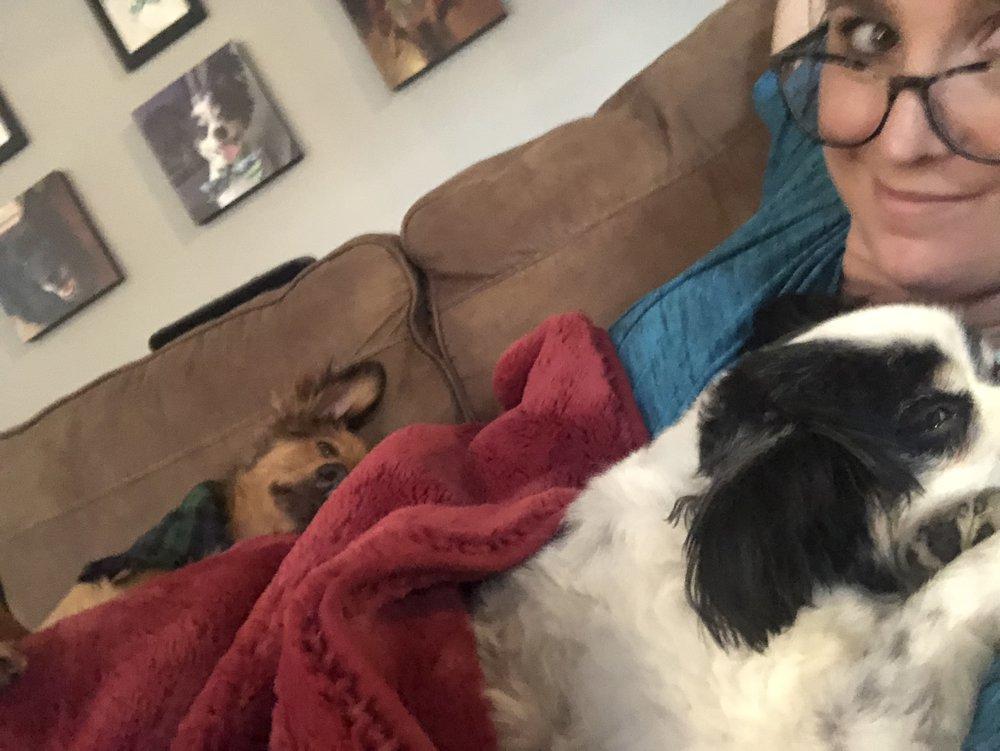cuddle dogs.jpeg