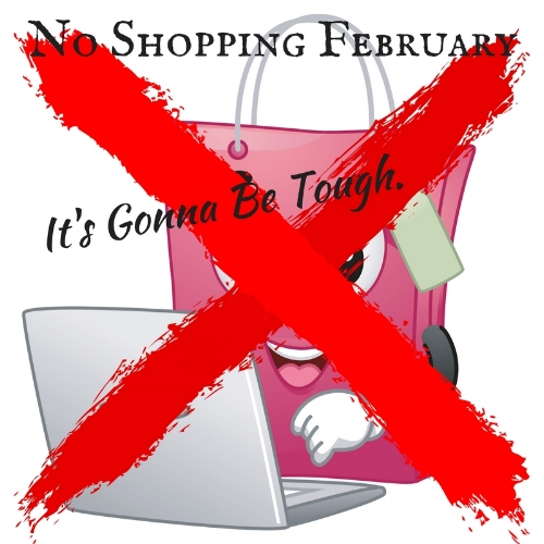 No Shopping February.jpg