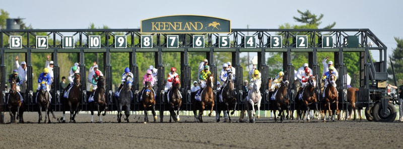 Full disclosure, this is from the Spring Meet at Keeneland. But I couldn't resist a picture with my favorite unicorn, Hansen in it. See the nearly white horse coming out of the 4 hole? Until Justify, he was our best finish in the Derby at 9th. This is from the Bluegrass Stakes, 2012. Photo by Tim Webb Photography.
