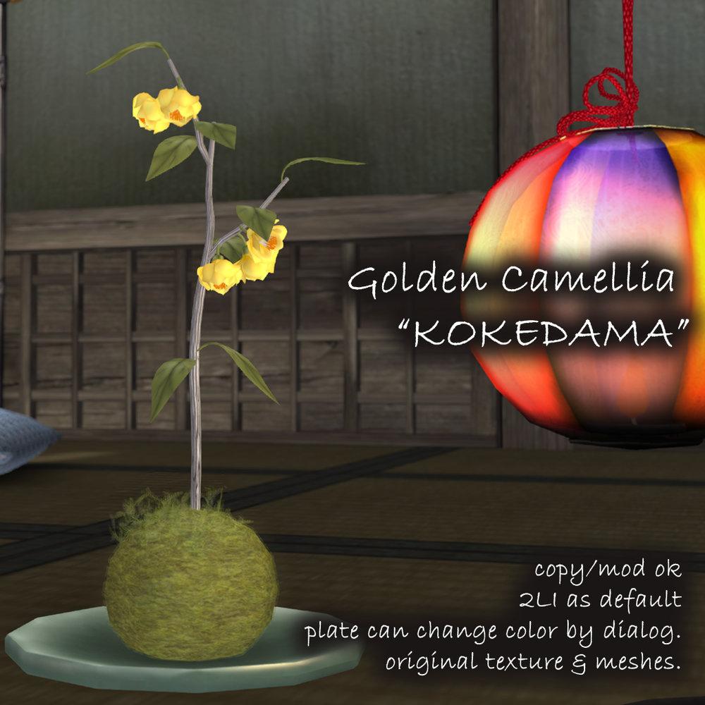 Golden Camellia Kokedama AD.jpg