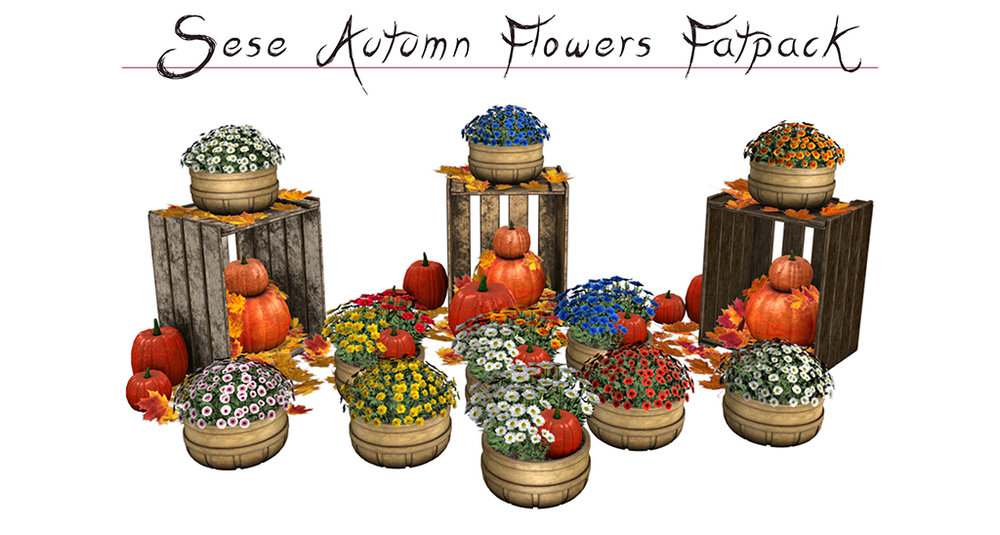 Sese-Autumn flowers.jpg