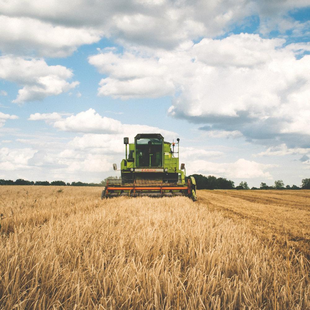 Agricultural Land -