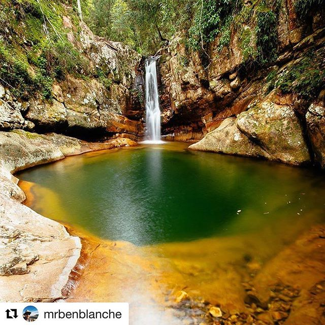 How stunningly beautiful is this waterfall along Cronan Creek, Mt Barney National Park, in Queensland's Scenic Rim? Simply wonderful!  #waterfall #mountbarneynationalpark  #mtbarneynationalpark #mountbarneynp #mtbarneynp #queenslandnationalparks #nationalparks #scenicrim #connectandprotect #naturalqueensland 📷 @mrbenblanche via #nationalparksqld ・・・ An small secluded waterfall along Cronan Creek, Mt Barney National Park. The water flows into an unusual deep round pool, so clear I could see the bottom. In the many years of coming to this mountain I had never gone up this creek. This spot is a real gem and worth coming back to for that perfect swimming hole, not to mention some great geological features as well.