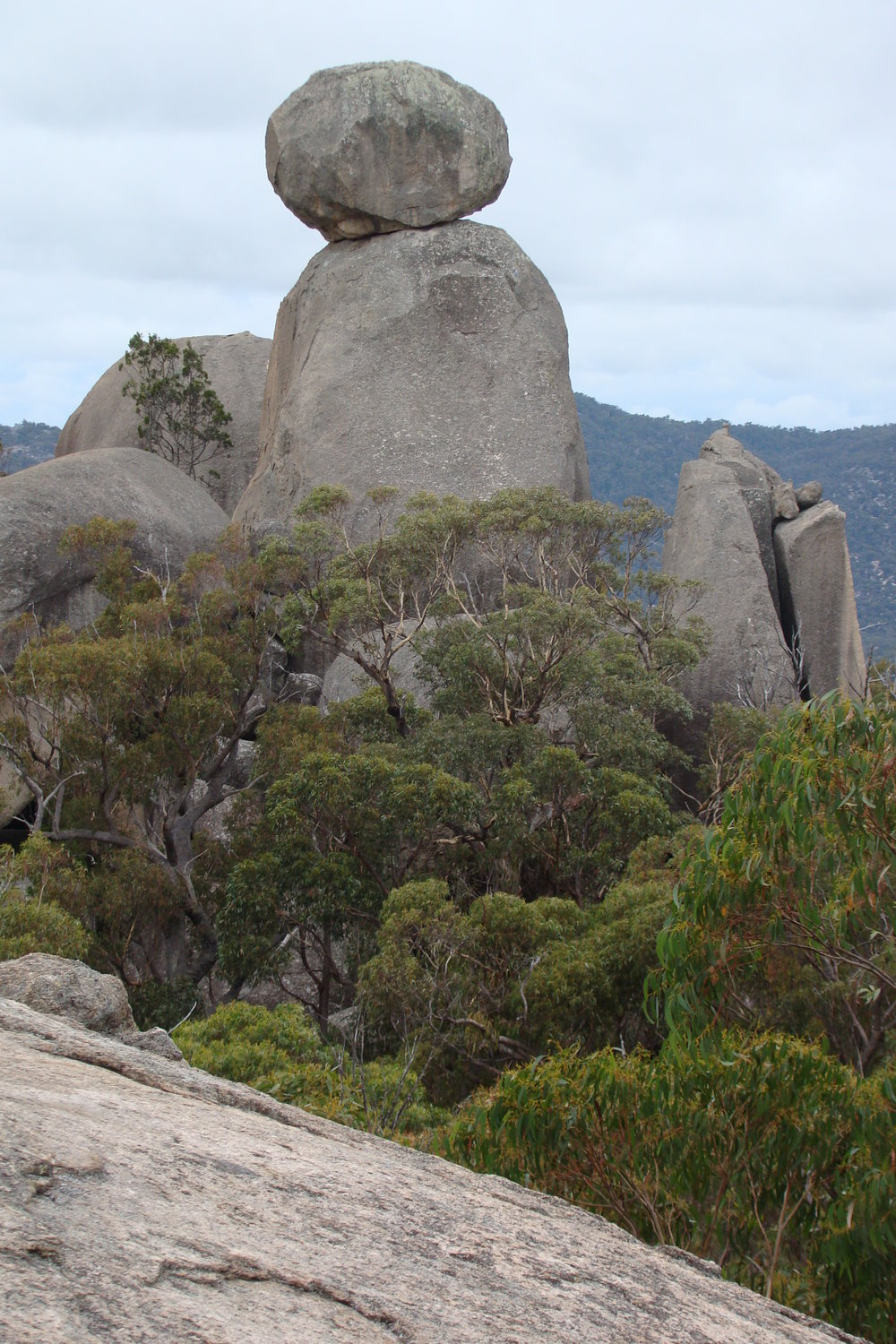 Girraween National Park, one of the parks established through the efforts of NPAQ members.