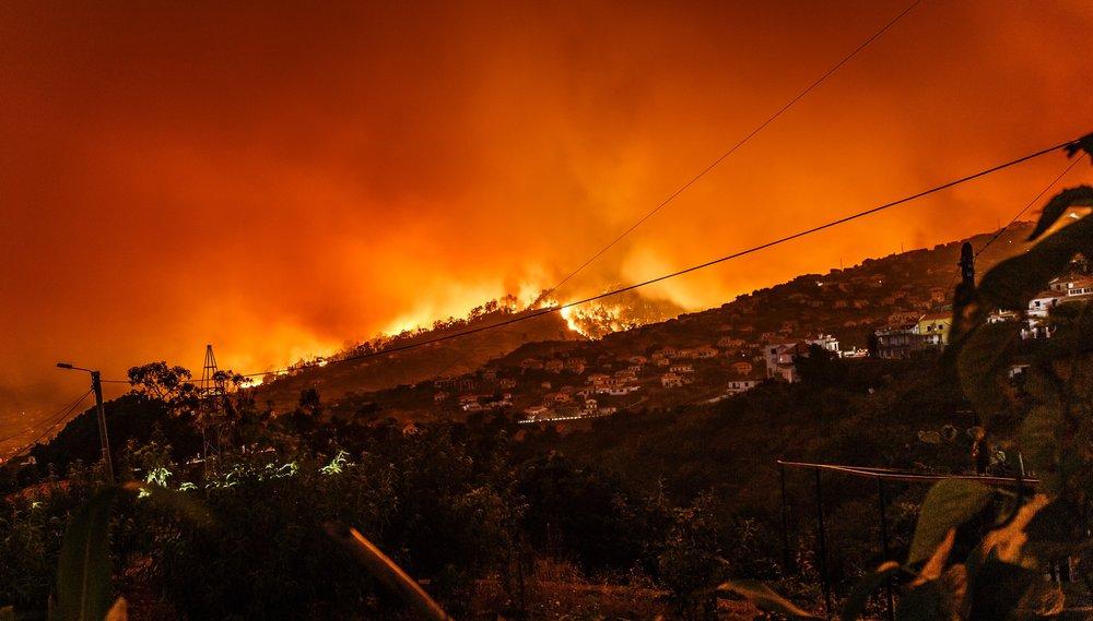 Bushfire. Photo: M. Held via Unsplash.