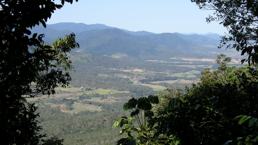 A view from Eungella National Park. Photo: Einalem via Wikimedia Commons.