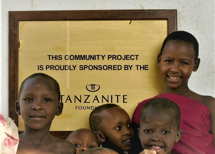 Tanzanite Foundation Project
