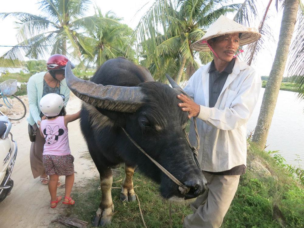 Vietnam2016_DCNK_0274.jpg