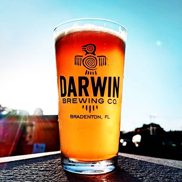 Man these rough weeks are driving me to drink!!! Who could use a pint🍺? Or a few🍻🍻!? . . . #needadrink #hangry #werehangrytravelers #placestotry #nomnom #thehangrytravelers #weekdayblues . Regrann from @darwinbrewingco . #darwinbrewingco #beerevolved #bradentonbrewed #craftbeer #livemusic #foodtruck #pittsburghpirates #trivianight #beerme #jade #paleale #beerporn #beersofinstagram #beerstagram #beer #brewing #brewery #craftbrew