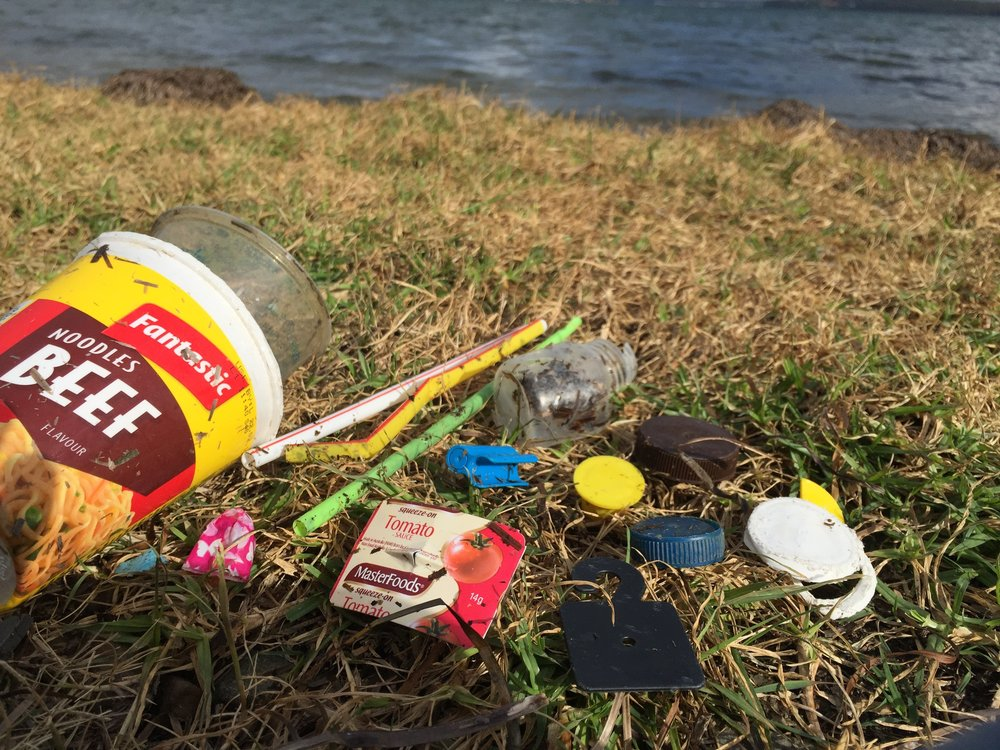 Image taken by Hollie @ warners bay foreshore - all these items where collected along the water front.
