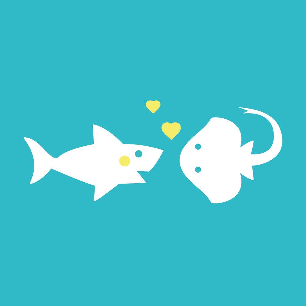 Sharks and Rays -
