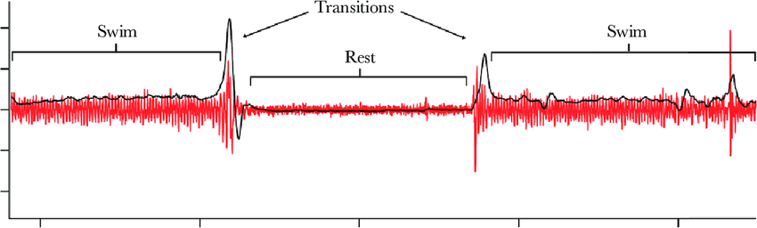 sualization-of-lemon-shark-transitions-between-swimming-and-resting-behaviors-in-dynamic.png