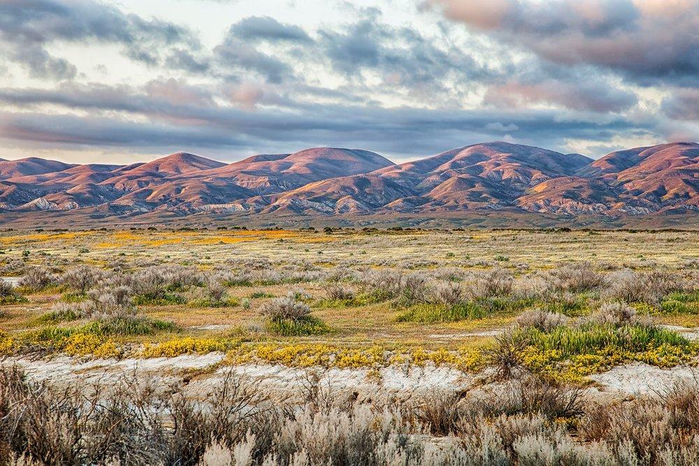 Temblor Range Sunset. © Bill Bouton