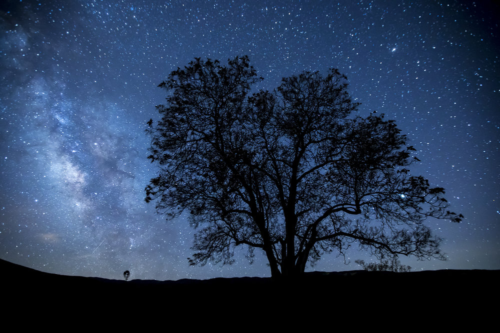 Milky Way Over Carrizo. © Bob Wick, BLM