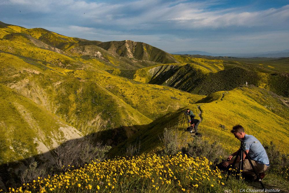 Photographer's Ridge. © Rick Halsey