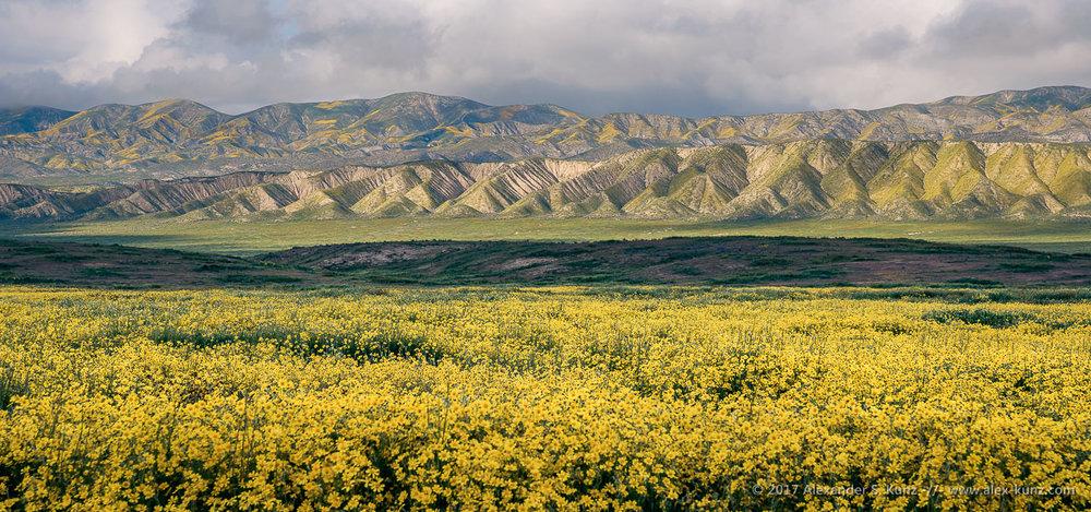 Elkhorn Hills & Temblor Range © Alexander S. Kunz