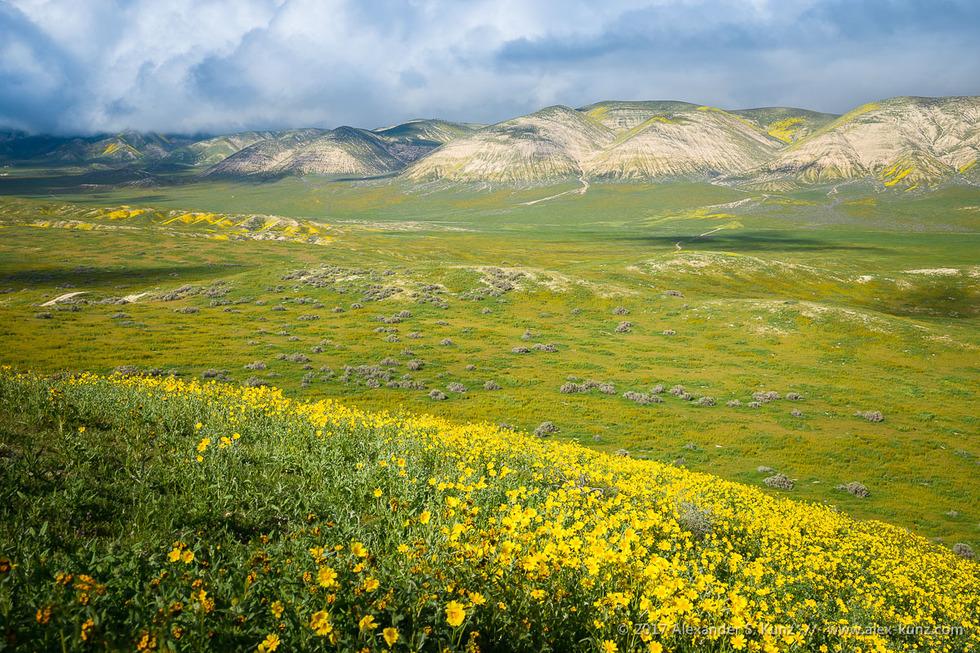 Elkhorn Hills © Alexander S. Kunz