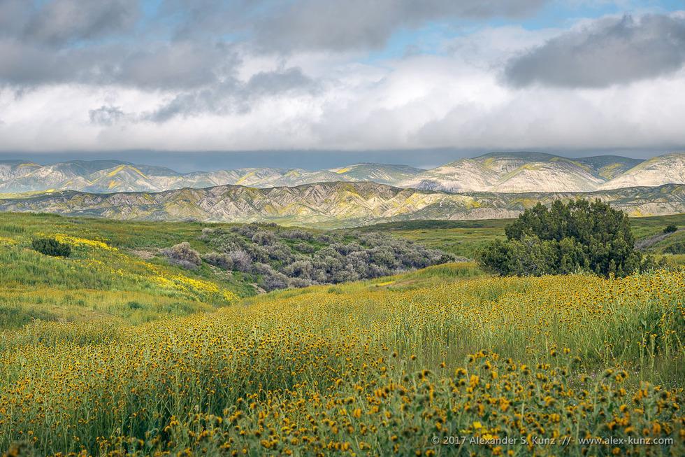 Elkhorn Hills from Caliente Range © Alexander S. Kunz