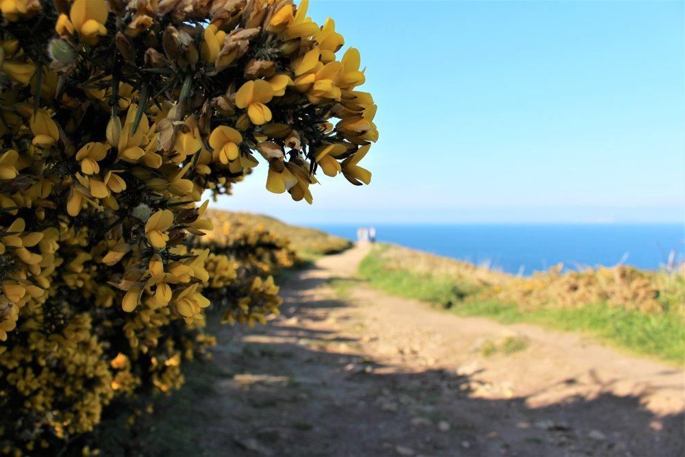 Bretagne 12.jpg
