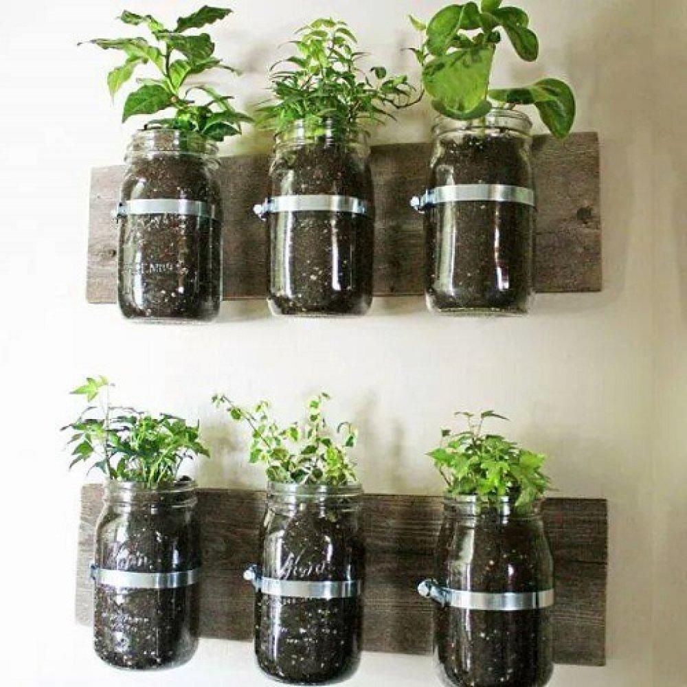 Không chỉ đồ nhựa mà với những chai, lọ thủy tinh, bạn cũng có thể tận dụng để trồng các loại rau nhỏ như rau thơm đấy! So với đồ nhựa thì trồng rau vào lọ thủy tinh sẽ nhanh hơn bởi bạn không cần qua khâu cắt nhựa.