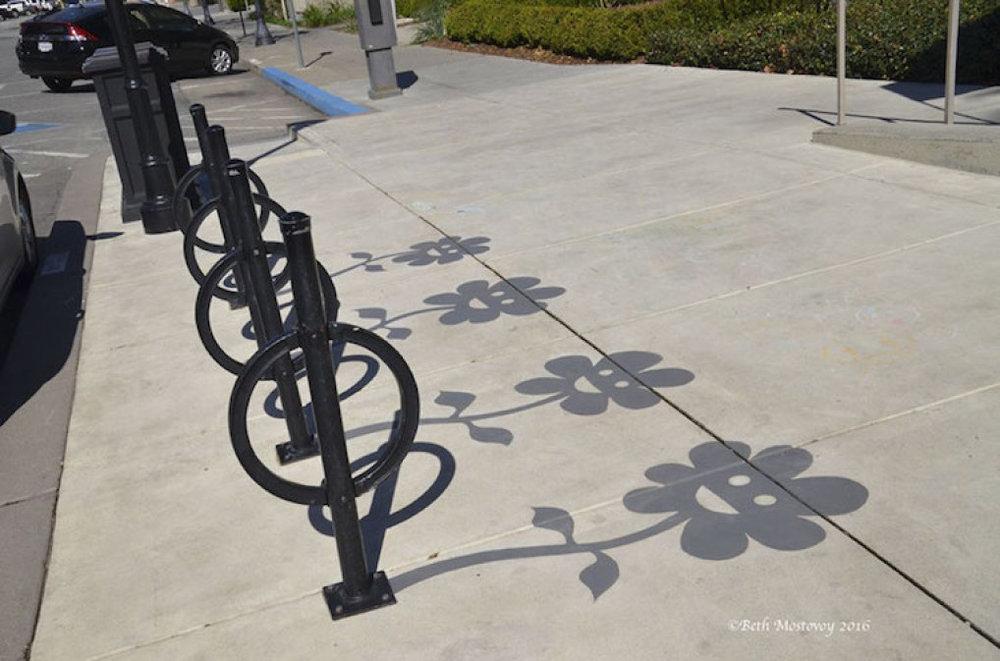 shadow-art-damon-belanger-redwood-3.jpg