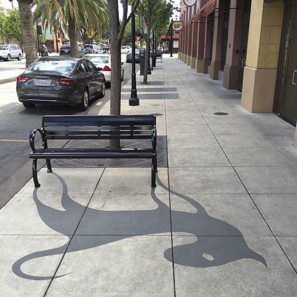 shadow-art-damon-belanger-redwood-2.jpg