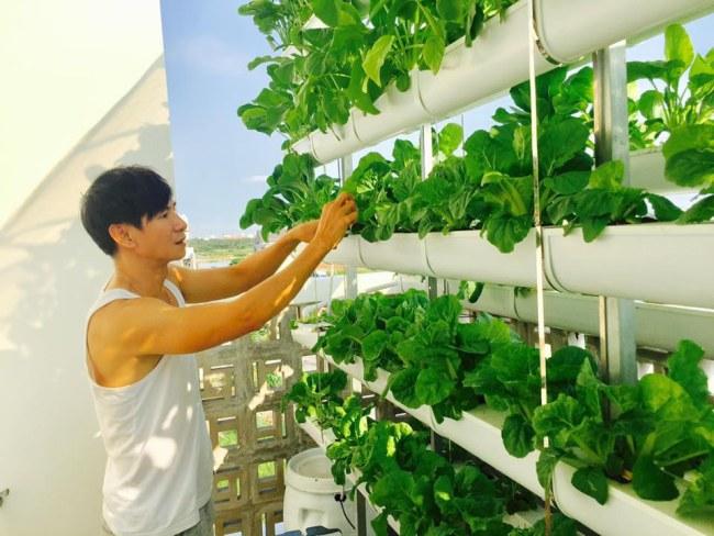 - Hệ Thống rau thủy cảnh trên tầng thượng, ngôi biệt thự 3 tầng tại quận 10, Tp.HCM của Lý Hải - Minh Hà.
