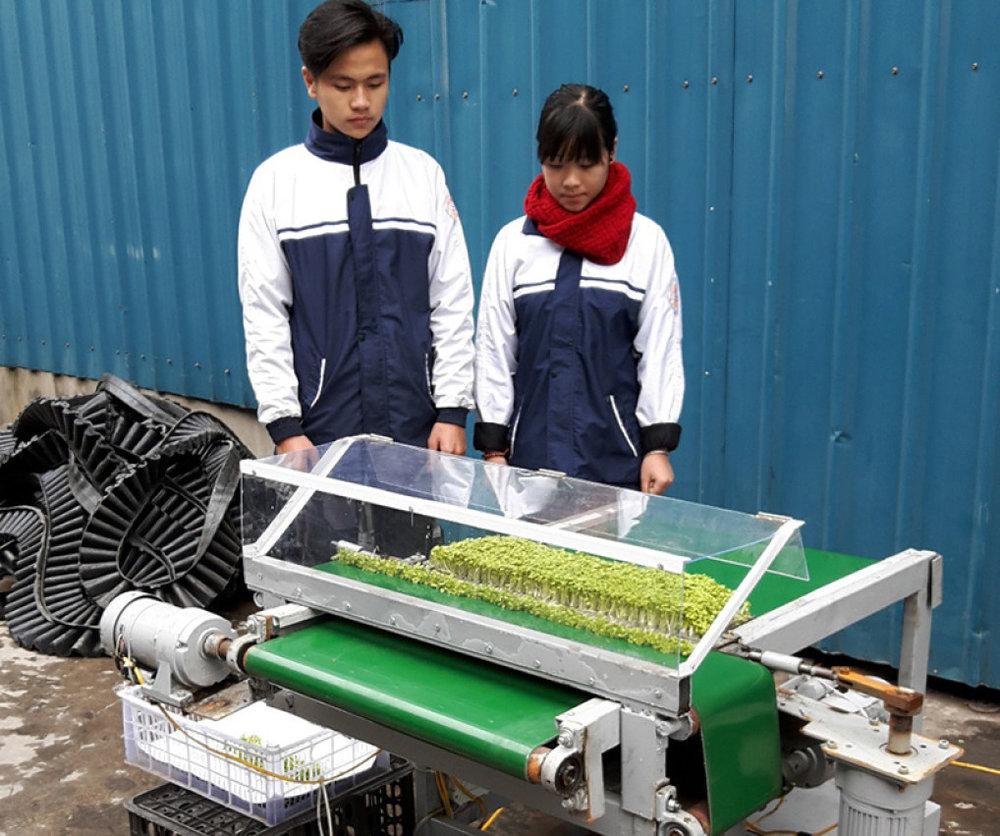 Máy cắt rau mầm tự động do Phạm Quang Hợp và Mai Thúy Hiền chế tạo.