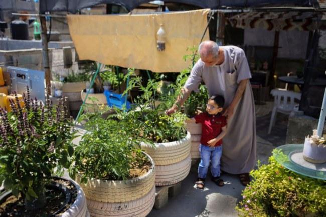 Trang trại sân thượng tại Gaza – nơi các nguồn lực rất khan hiếm - Những sáng kiến trong lĩnh vực nông nghiệp đô thị không cần phải quá lớn lao mới tạo ra sự khác biệt.