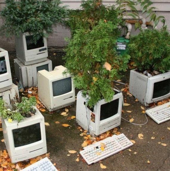 Cách tốt nhất để tái chế máy tính: biến chúng thành chậu cây.