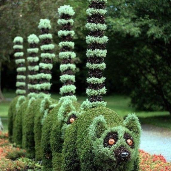 Người thợ làm vườn này thật khéo tay, tuy nhiên sao chú chồn nào cũng đang trong tình trạng sắp chiến đấu thế nhỉ?