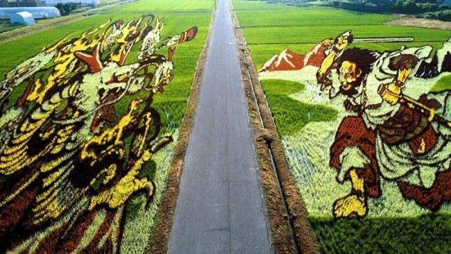 Bức bích họa rộng 15,000 mét vuông luôn biến hóa theo từng năm