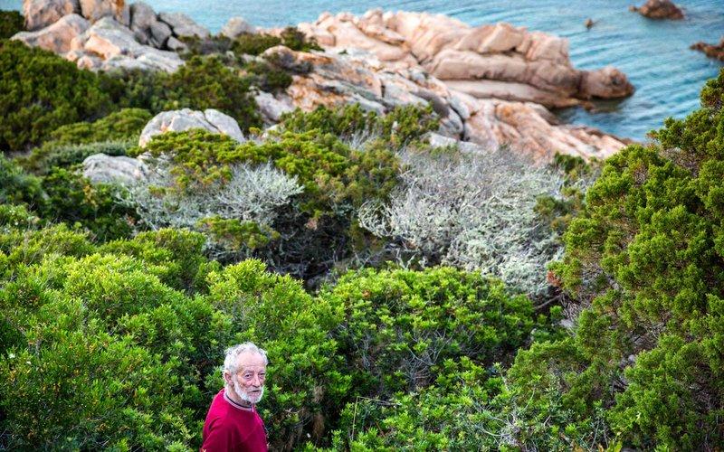 - Cho đến nay, 28 năm sau ngày trôi dạt đến đảo Budelli, ông Morandi vẫn ở một mình trên đảo và làm nhiệm vụ của mình.