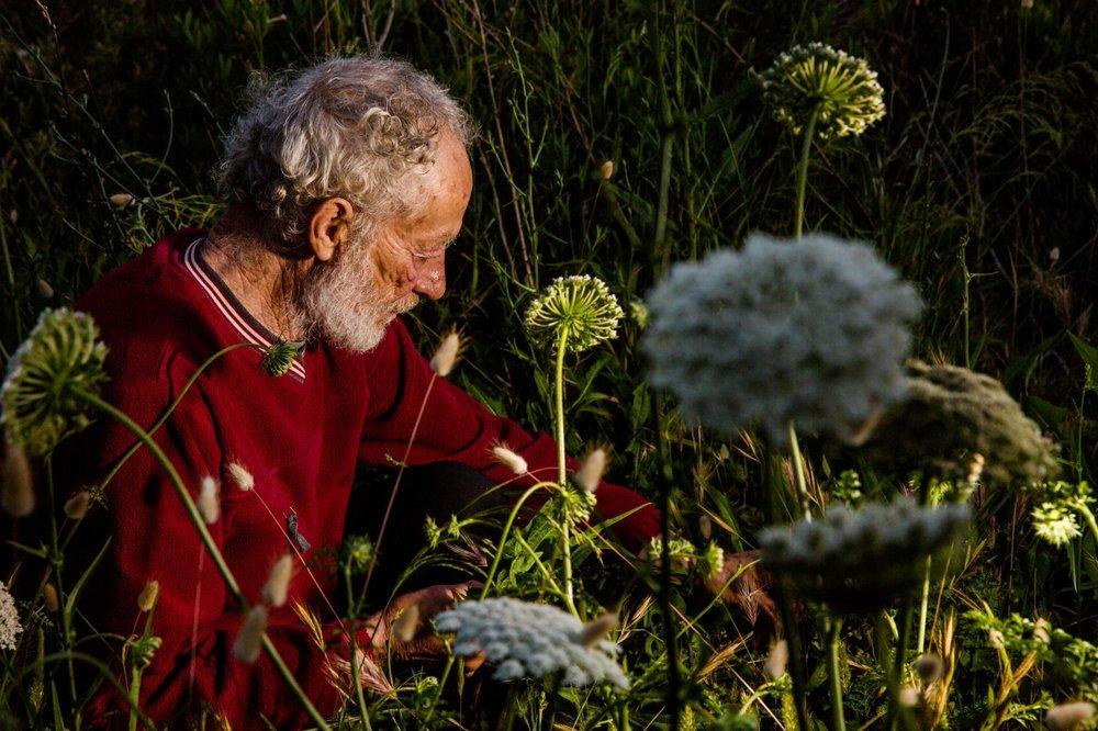 - Ông tin rằng trong việc hướng dẫn mọi người cách cảm nhận vẻ đẹp tự nhiên sẽ hiệu quả trong vấn đề bảo tồn thiên nhiên hơn là những chi tiết vụn vặt có tính khoa học.