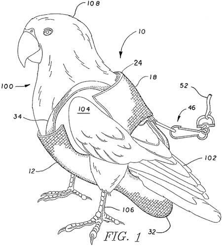Tã cho chim -