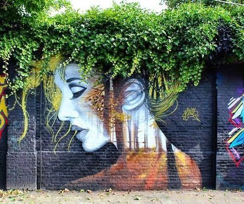 Những cây leo đu đưa trên gờ tường - hình ảnh quen thuộc này có lẽ bạn đã thấy ở hàng triệu ngôi nhà, góc phố. Nhưng nghệ thuật đã đưa bức tường này lên một 'tầm' mới, thành một điểm nhấn khác biệt và khiến không gian đường phố thơ mộng hơn, tinh túy hơn.