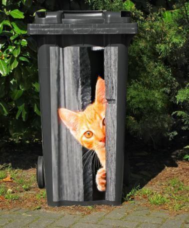 Chú mèo trốn trong thùng rác vỡ? Không sao bạn có thể bỏ rác như thường. Thực ra đây chỉ là một thùng rác được dán tranh 3D tại Hà Lan.