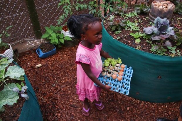 Một đứa trẻ đang mang một khay đựng các cây non được ươm trong vỏ trứng (Ảnh Nils Adler).