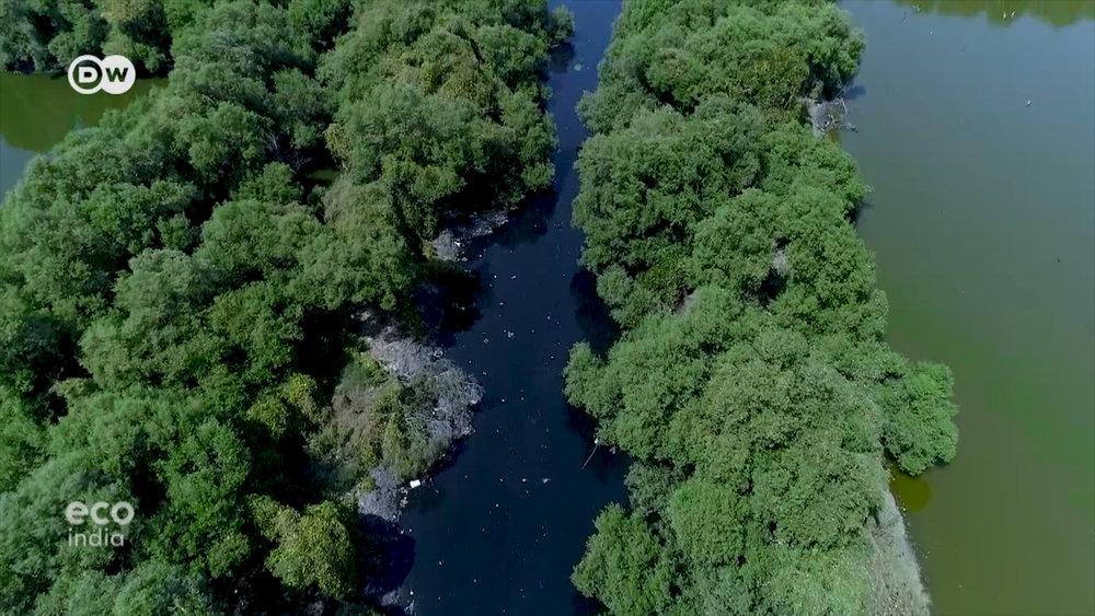 Sự khác biệt có thể nhìn thấy bằng mắt thường giữa nước trong hệ thống hồ sinh thái và nước sông Mithi nơi cửa biển.