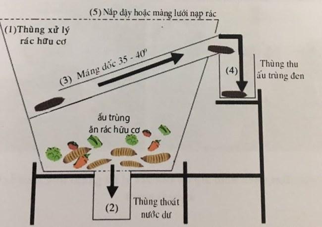 Bản thiết kế thùng rác chứa ấu trùng ruồi lính đen của Thu Phương và Thanh Mai